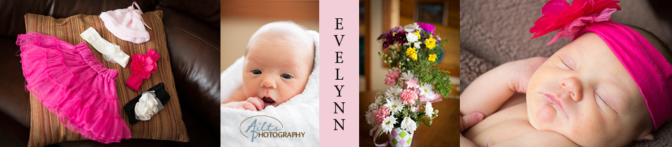 evelynnfeaturedimage